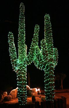 pull out some of those decorations and string a cactus with some lightsif youre feeling a little extra you can even throw on some fake snow - Cactus Christmas Decorations
